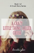 A Crazy Little Thing Called Crush 1: A Crush Story by diwatangbae