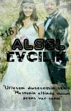 Alsel//Evcilik  by Bonibon3455