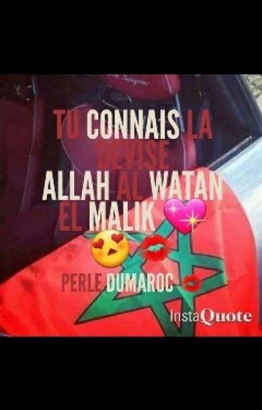 Book Dune Marocaine Rifia ♥