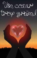 Un coeur trop grand by FantasyS13
