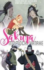 [GaaSaku] Sakura Momochi Hatake [Translation] by HuyenAya