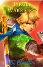 ~Hyrule Warriors~ Link x Reader by bluecat17