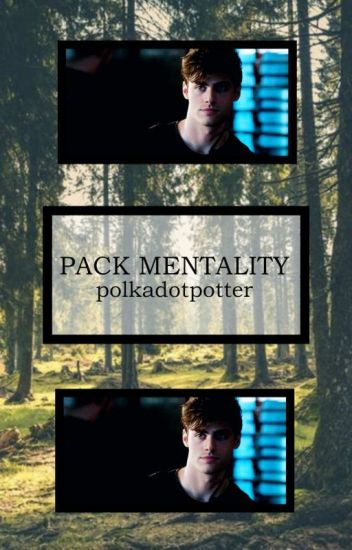 Pack Mentality // s. stilinski