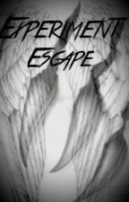 Experiment Escape by Skit13
