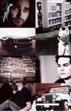 Todos quieren a Stiles by CuteandLittleSheWolf