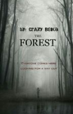 The Forest by _CrAzy_BelKa_