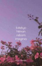 Katekyo Hitman Reborn X Reader by bya-channn