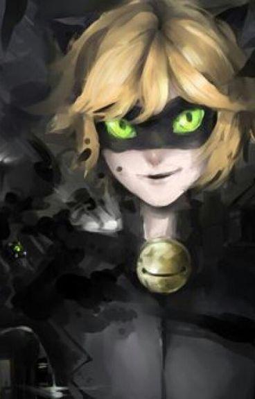 Mi Gatita Traviesa (Cat Noir Y Tu) (+12)