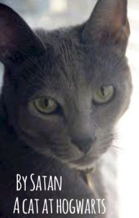 A cat at hogwarts  by --satan--