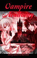 Berk Vampire academy by httydlove4ever