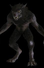 Werewolf Rebellion by McrFanatic33