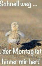 Lustige Bilder Zum Lachen! by Angiwolf