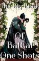 The Big Book Of BatCat One Shots by MelonBiskitQueen