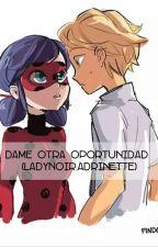 Dame Otra Oportunidad (LadyNoir,Adrinette) by YeniseiSpindola