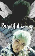 Beautiful wings ░Ziga░ by Rainights