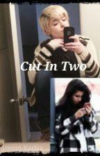 Cut In Two (Lauren/You) by jaureguis-criminal
