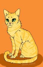 Warrior Cats : Elemental Clans Rp by Warriors_Of_Fireclan