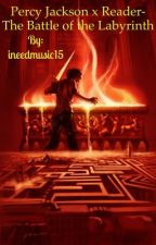Percy Jackson x Reader-The Battle of the Labyrinth by ineedmusic15