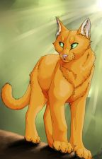 My opinions about Warrior Cats by SanzUnderrise