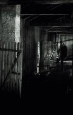 Entführt, gefoltert, versklavt...ein leben ohne Happyend?! by nalanie510