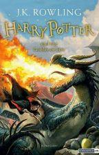Harry Potter Và Chiếc Cốc Lửa by keithkeithn