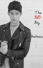 The Bad Boy | Raola by thetinosandra