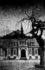 De Villa achter het Hek by nouki52