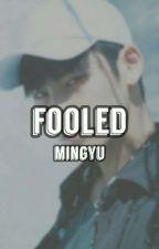 Fooled // kim mingyu by wonwooly