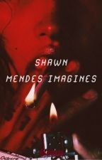 imagines ; shawn mendes by moondustmendes