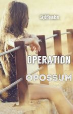 Operation Opossum by SkyOfFreedom