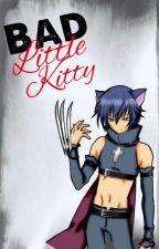 Bad Little Kitty (Ikuto X Reader) by H2OKitten
