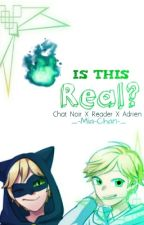 Is This Real?»Chat Noir X Reader X Adrien by Mia-Is-Special
