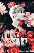 A Little Thing Called Love  ( Vkook And Markbam) by vkookie2