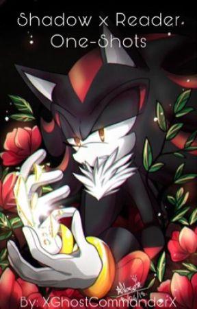 Shadow The Hedgehog x Reader One-Shots - [Lemon] Predator Shadow x