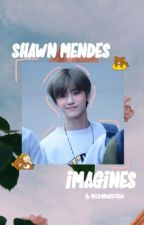 Shawn Mendes Imagines  by aestheticlollipop
