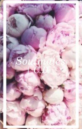 Soulmates | C.D by jean-hp