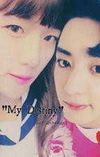 My Destiny by ohtaeshin0461
