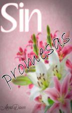 Sin promesas (Segunda parte de No lo prometas) by Alma_Dawn