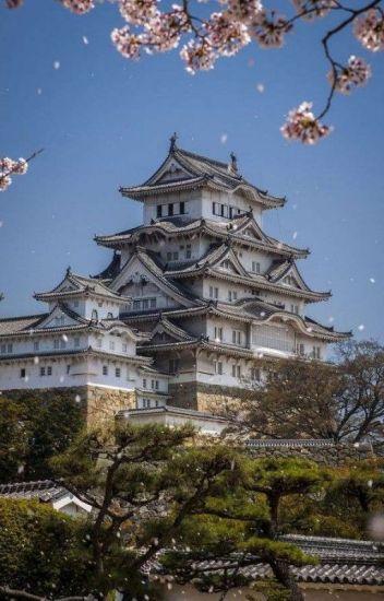 Kaguya Castle