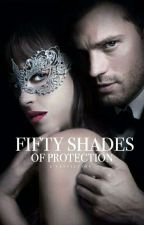 Fifty Shades Protection (Book 1) by haydenr389