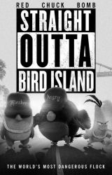 Angry Birds: Explicit by regularshow2001