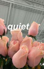 quiet by pardunme