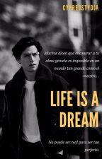 La vida es un sueño ~ Cole Sprouse >>editando by goldencenize