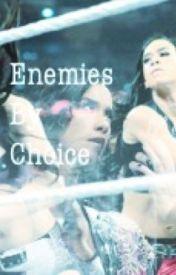 Aj & Paige: Enemies By Choice  by chumadbitch