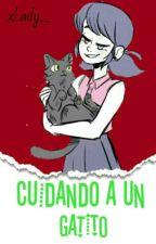 [ML] Cuidando A Un Gatito ™ [ A L ] #PremiosWaltTv2016  by xLady_