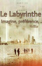 La Labyrinthe : Imagine, préférence, Etc by Helllia