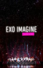 EXO Imagine Authorpink by authorpink