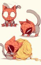 spideypool và một con mèo by Dung10