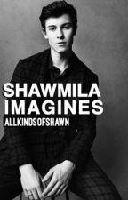 Shawmila Imagines Pt. 1 by AllKindsOfShawn