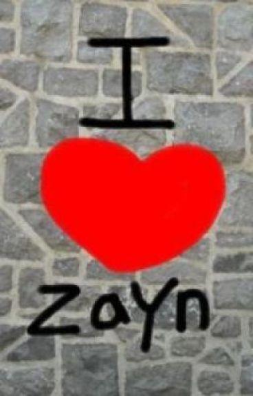I love Zayn by annipanni